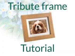 Tribute Frame